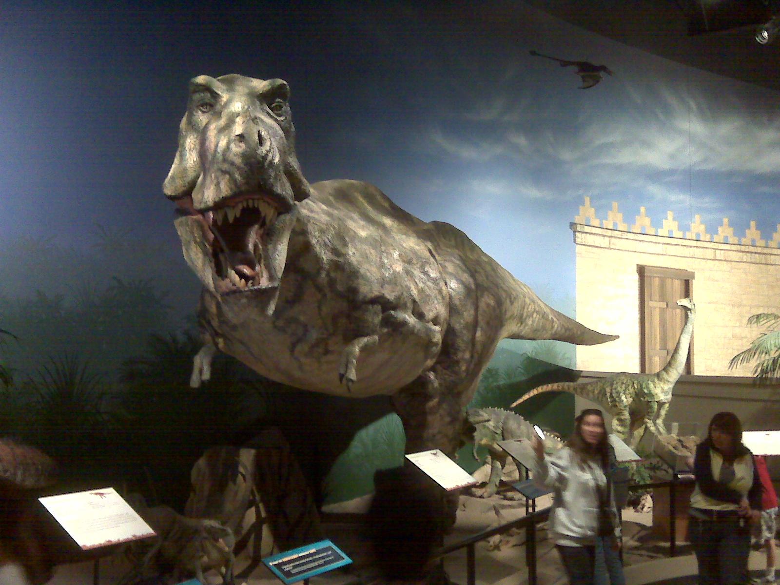 Fun At The Creation Museum Tim Chaffey